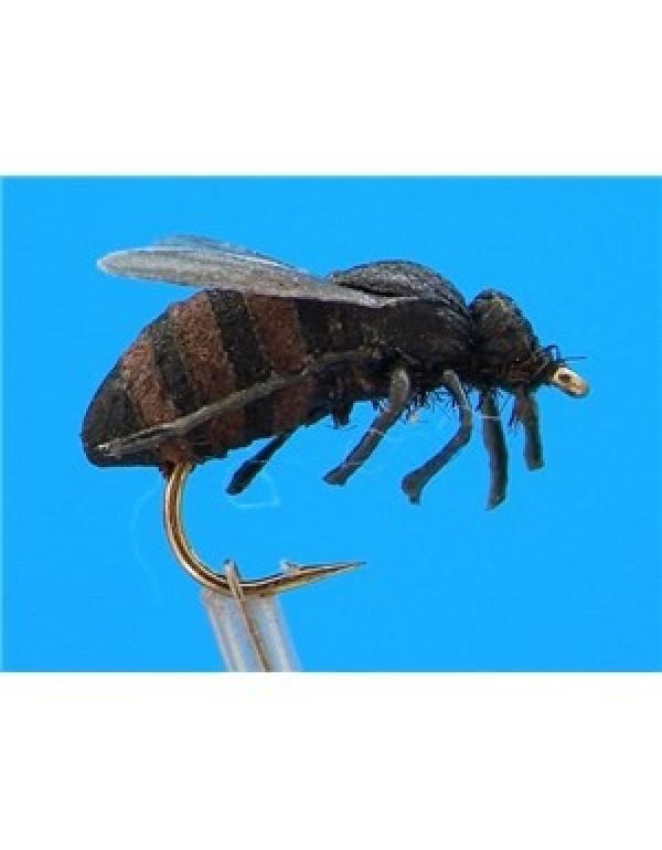 FTW HONEY BEE