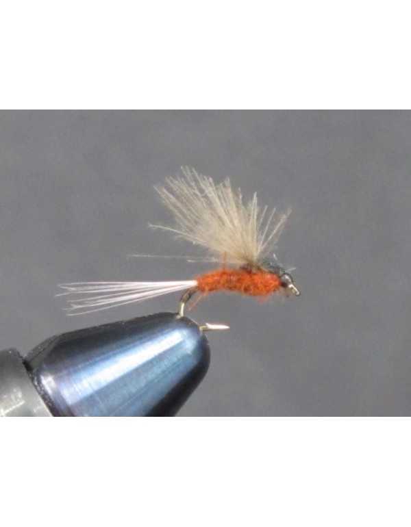 EUM 021 Rusty CDC