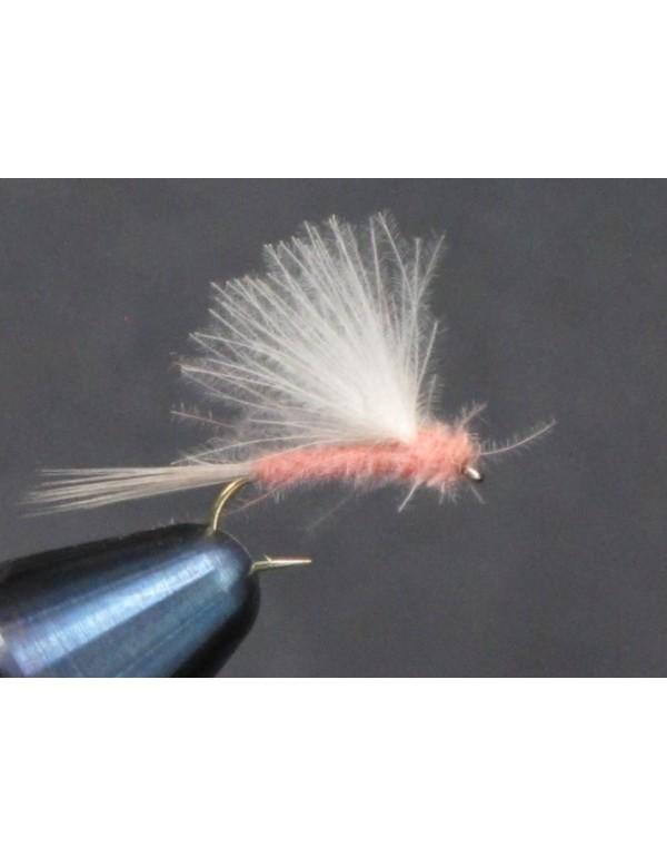 EUM 023 PinkLady CDC