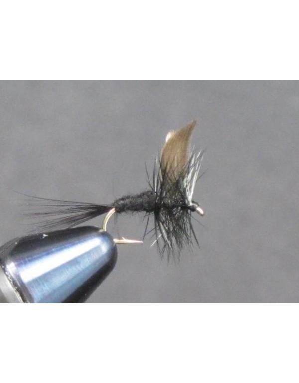 EUM 025 Black Gnat