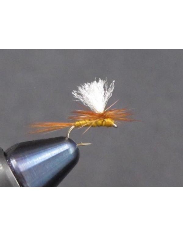 EUM 036 Parachute Olive