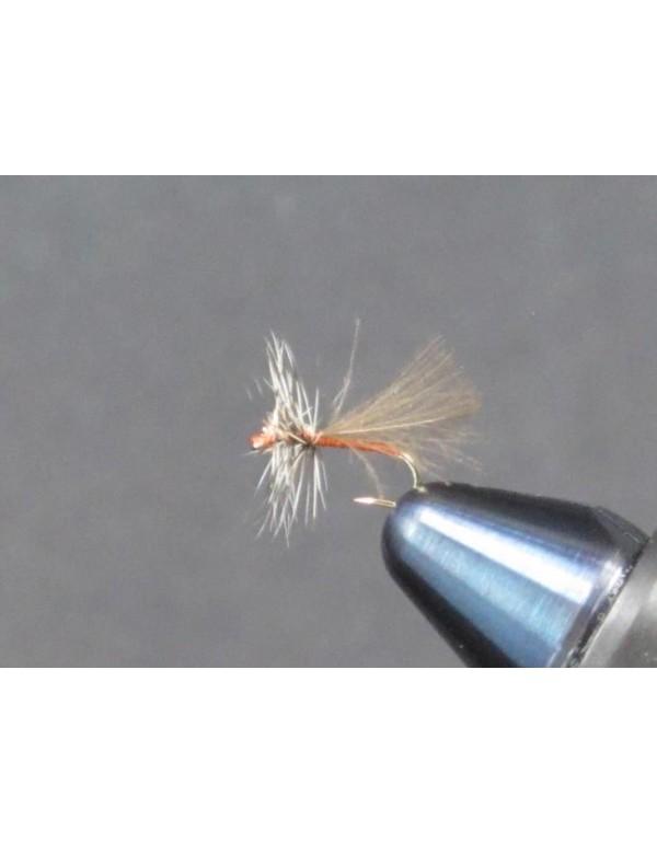 EUM 043 CDC Caddis