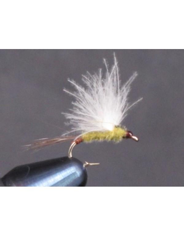 EUM 022 Pale Olive CDC