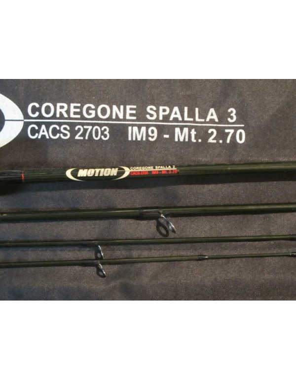 Motion Coregone Spalla 3