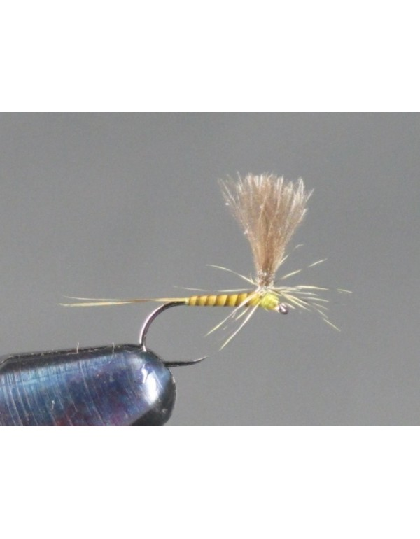 FTW QUILL PARACHUTE GOLDEN OLIVE