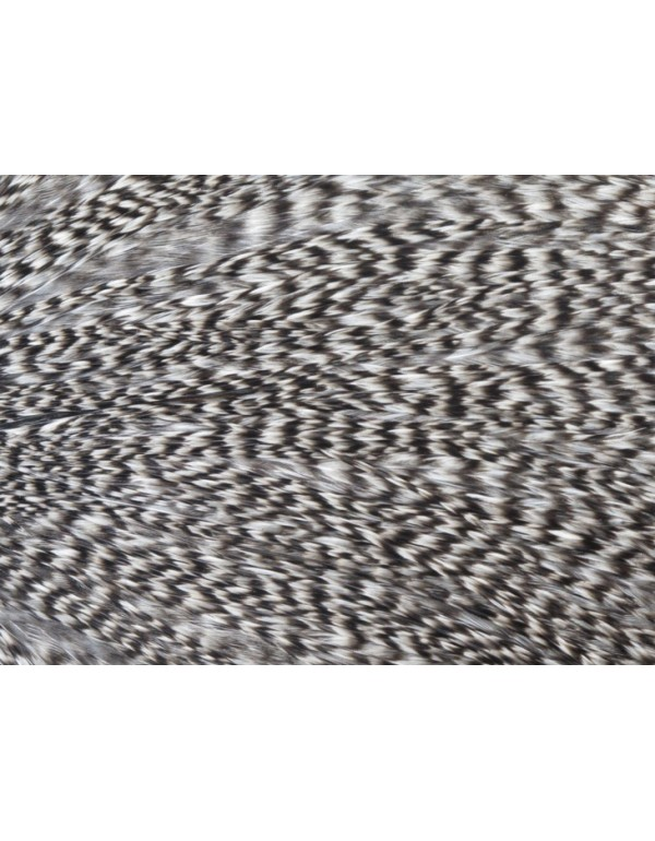 1/2 WHITING PRO GRADE CAPE