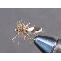 EUM 052 Md. Brown Sedge